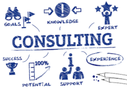 Consultant for Advisory Firm